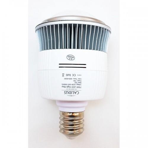 Żarówka przemysłowa LED CVO-75W-120